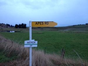 Apes Road - Karitane